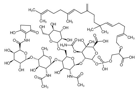 bambermycin