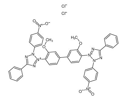 氯化硝基四氮唑兰