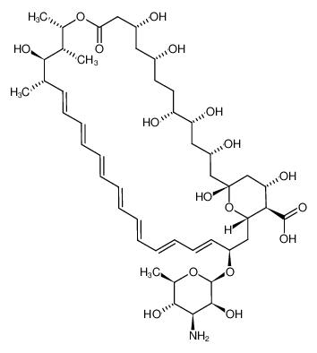 两性霉素B