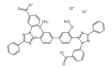 3-硝基四氮唑蓝氯化物