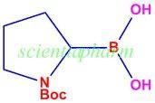 1-N-Boc-Pyrrolidin-2-ylboronic acid 99%