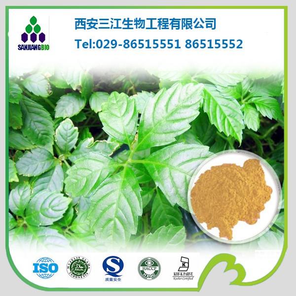 GYNOSTEMMA PLANT EXTRACT, GYPENOSIDES 90% BY UV 80%